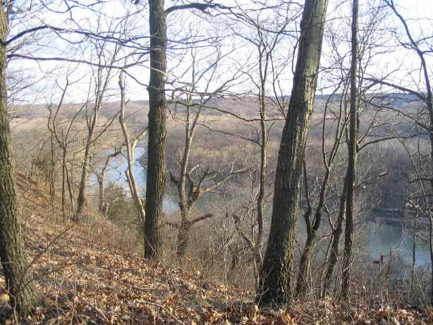 Meramec River through trees